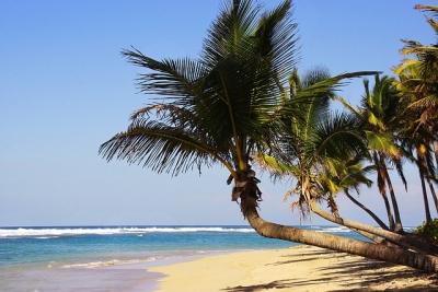 Пунта Кана- Доминиканска република- Най-посещаваните за почивка градове по света